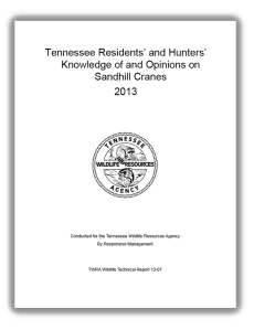 TN Sandhill Crane survey report cover