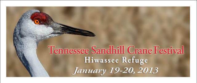 TN Sandhill Crane Festival graphic