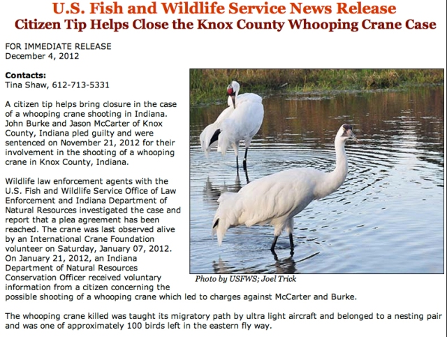 Citizen Tip Helps Close Knox County IN Whooping Crane Case