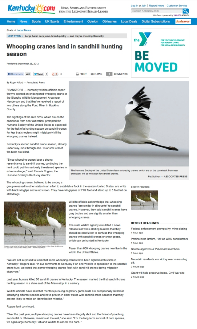 LHL_AP article_Whooping cranes land in Sandhill hunting season_28 DEC 2012