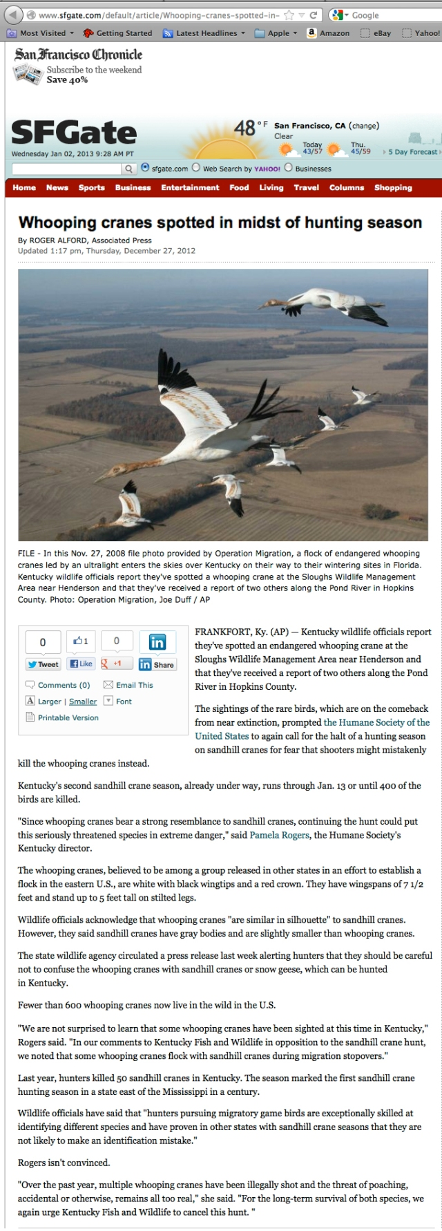 San Francisco Chronicle_27 DEC 2012_Whooping Cranes spotted in midst of hunting season