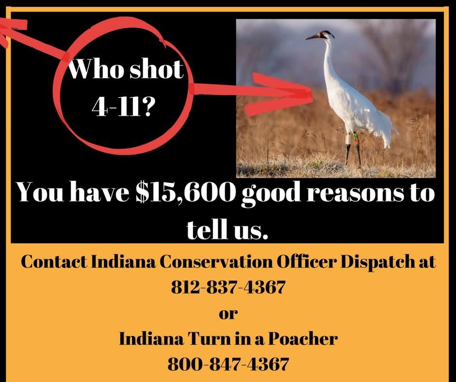 who-shot-4-11-reward-poster